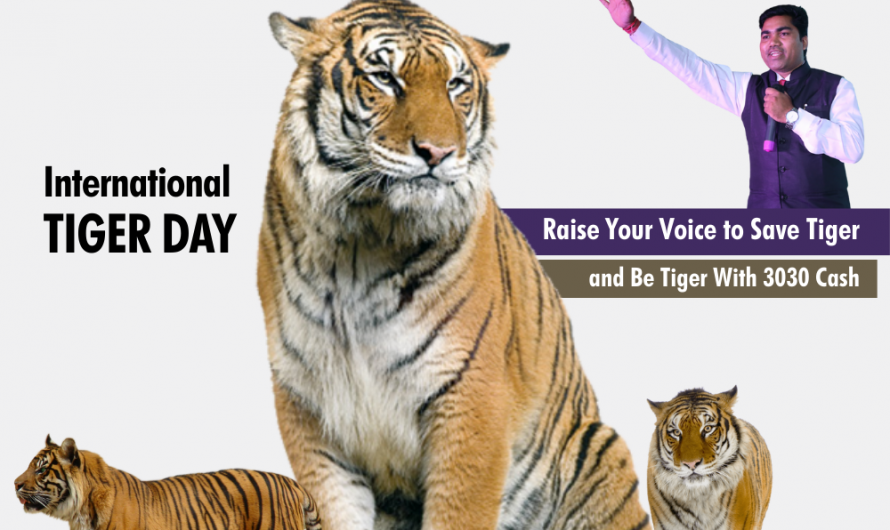 International Tiger Day: Creatives and Images
